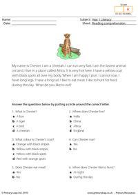 Reading comprehension - I am a cheetah (short text)