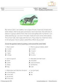 Reading comprehension - I am a zebra