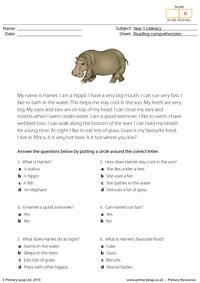 Reading comprehension - I am a hippo