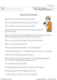 Reading comprehension - Ned and the Spiky Ball