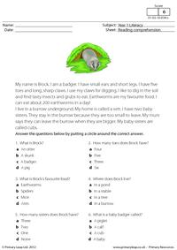 Reading comprehension - I am a badger