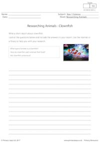 Researching Animals - Clownfish