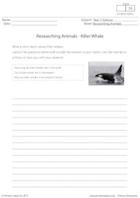 Researching Animals - Killer Whale