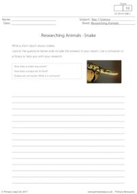 Researching Animals - Snake