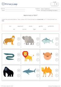 Identify animals - Mammal or fish?
