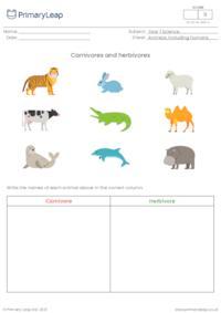 Sorting activity - Carnivore or herbivore?