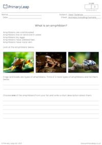 Introduction to amphibians