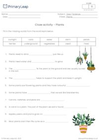 Cloze activity - Plants