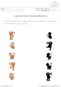 Shadow Matching (Monkeys)