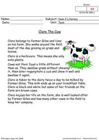 Clara the cow