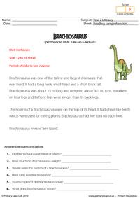 Reading comprehension - Brachiosaurus (non-fiction)