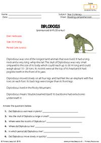 Reading comprehension - Diplodocus (non-fiction)