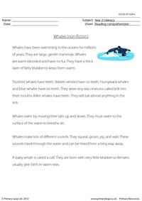 Reading comprehension - Whales (non-fiction)