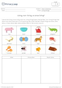 Living, non-living, or once living sorting activity