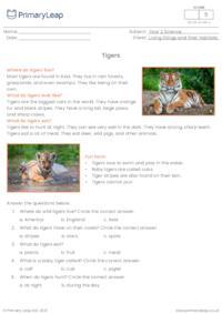 Tigers reading comprehension
