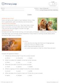 Lions comprehension