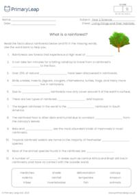 Cloze Activity - What is a Rainforest?