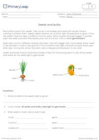 Seeds and bulbs
