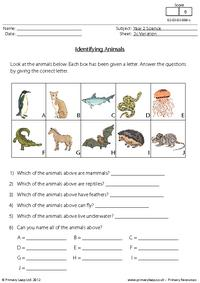 Identifying animals