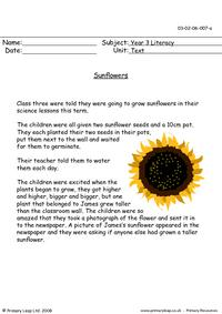 Reading Comprehension - Sunflowers