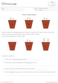 Plants need water