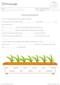 How do plants grow