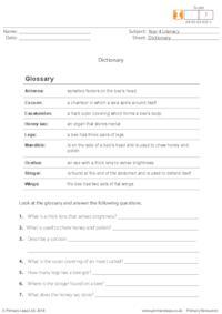 Dictionary 1
