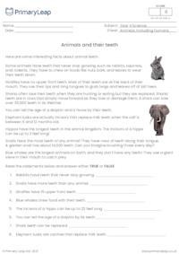 Animal teeth fun facts