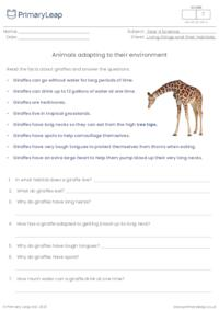 Animals adapting to their environment  - Giraffes