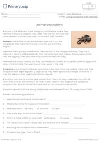 Animal Adaptations 2