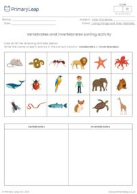 Vertebrates/invertebrates sorting activity