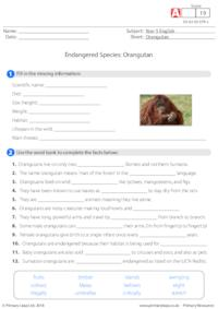Cloze Activity - Orangutan