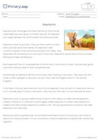 Comprehension - Elephants