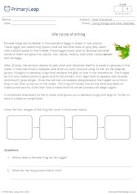 Life Cycle of a Frog Questions