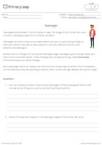 Human life cycle - Teenager