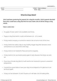 What Do Dogs Need?