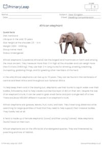 Reading comprehension - African elephant