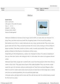 Reading comprehension - Walrus