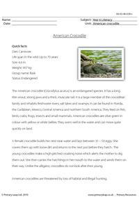 Reading comprehension - American crocodile