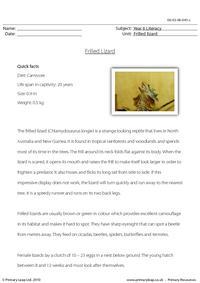 Reading comprehension - Frilled lizard