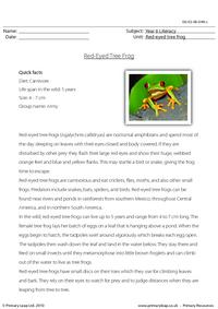 Reading comprehension - Red-eyed tree frog
