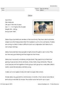 Reading comprehension - Zebra
