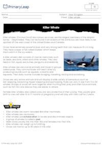 Reading comprehension - Killer whale