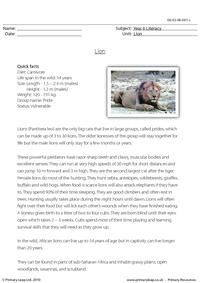 Reading comprehension - Lion