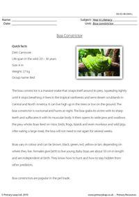 Reading comprehension - Boa constrictor