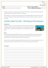 Writing a Conclusion - Green Sea Turtle