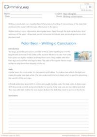 Writing a Conclusion - Polar Bears