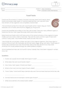 Reading comprehension - Fossils