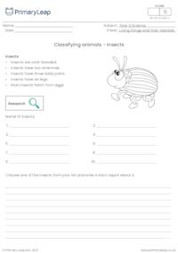 Classifying animals - Insects
