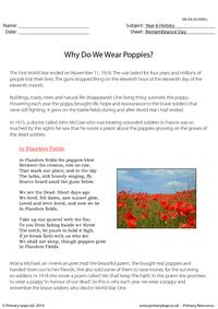 Why Do We Wear Poppies?